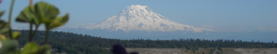cropped-fi-mt-rainier.jpg