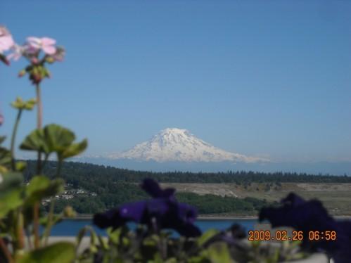 FI Mt Rainier